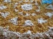 Torta ricotta amaretti
