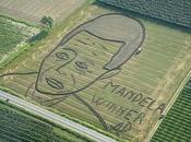 Facce trattore, Land