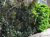 DanaGardenGuide York _Community Garden