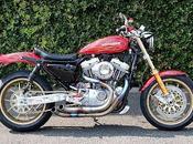 Harley 1200 1993 Glory Hole