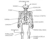 air: essere italiani male alla salute