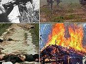 movimenti hanno svolto ruolo importante nella società, anche guerra Vietnam condizionata Minh potè liberare Vietnam. governato.