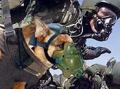Animali guerra