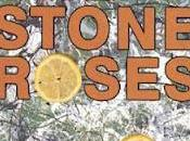 """Stone Roses """"The Roses"""""""