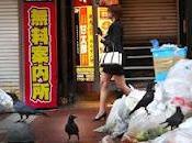 guerra corvi Giappone