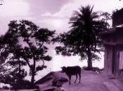 mondo esiste più, l'album fotografico Tiziano Terzani