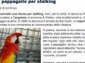 Denunciano pappagallo stalking