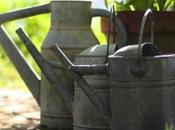 watering zinc… Shabby Chic Friday