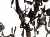 Titoli coda sull'esordiente