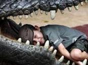 Scoperto coccodrillo mangiatore uomini lungo quasi metri