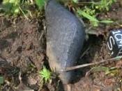 Caccia frammenti meteorite caduto California