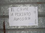 Dialetto d'Umbria: pulle, rattattuiu, sciampagnasse, gabarrè, visavì