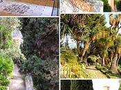 Giardini botanici Hanbury Ventimiglia