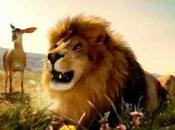 Corri leone, veloce come gazzella