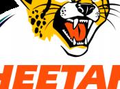Super Rugby: Cheetahs spunta Waratahs (35-34), Sharks domano Stormers (25-20)