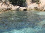 Maddalena-Isola Santo Stefano Imprenditore acquista parte