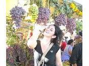 Tarija vino