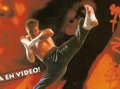 Kickboxer Aggressor L'aggressore