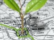 Milano, ancora 800mila euro progetti efficienza edilizia