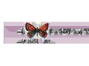 i-Fantasy... ECCO NUOVI E-BOOK SOLI