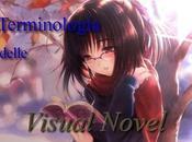 Terminologia delle Visual Novel