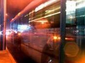 domani notturni giovani turisti Partono linee Notte Rossa