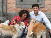 cani cinesi (morti) gita Ucraina spot animalisti