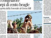 Green Hill sotto sequestro cani congelatore.