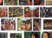 Noi, Indigeni. Difesa Beni Comuni