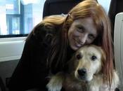 oggi anche cani taglia grossa potranno viaggiare Frecciarossa