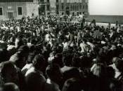 Cento anni guerre cinema, cineforum Torino