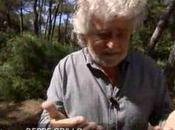 """Beppe Grillo """"senza censura"""" un'intervista Euronews"""