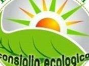 L'angolo consiglio ecologico: mille dell'aceto