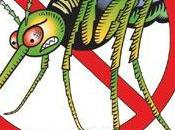 Rimedi contro zanzare...