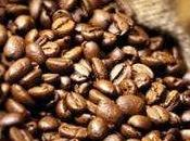 Gelato fiordipanna caffè