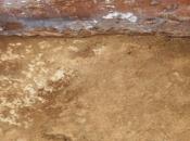 nuova necropoli lucana Paestum