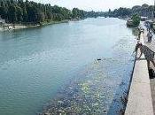 sommerso rifiuti, pressing Torchio Salini: l'amministrazione provinciale esca letargo!