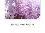 Wiki Wonderland donazione favore Wikipedia