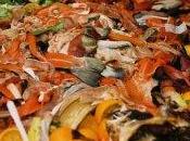 Usa: ogni anno nella spazzatura cibo