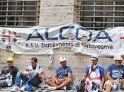 Alcoa, Sulcis, Pomigliano tutti altri lottano insieme. P.I. individuali hanno nemmeno questa possibilità, solidarietà categoria. Persino calciatori l'associazione