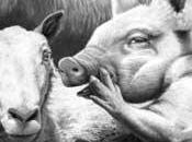 APPUNTI SULL'AMORE Simone Weil