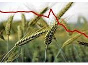 Cementificazione deficit suolo agricolo: proposta dossier Ministero dell'Agricoltura