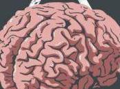 siete mangiati cervello?
