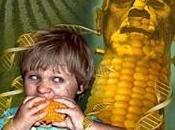 Punti vista neutrali cercasi valutazione ricerche OGM, astenersi perditempo!