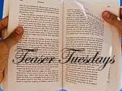 Teaser Tuesdays (83)