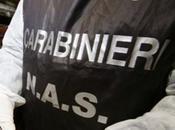 Perquisizioni Genova scandalo della Sandoz