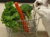 little Vegetarian