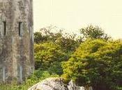 Irlanda, 1991