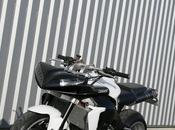 "Yamaha YZF-R1 ""Street"" Lazareth"