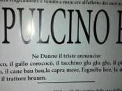 Pulcino Pio: parodie, schiaffi supereroe